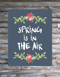 spring_isin_the_air1