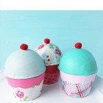 Cupcake Containers For Kids