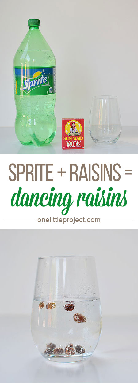 Dancing-Raisins